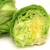 img_hallde-ctguide_lettuce-170x170.jpg