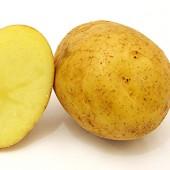 img_hallde-ctguide_potato-170x170.jpg